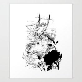Nyala Art Print