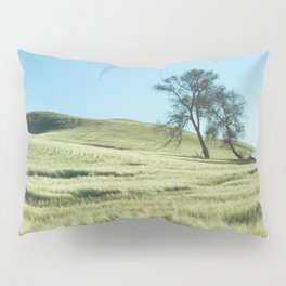Lone Tree Photography Print Pillow Sham
