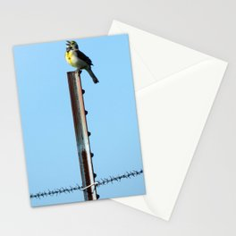 Beauty and the Barbwire Stationery Cards