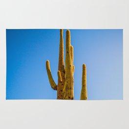 Minimalist Green Cactus Blue Sky Mexican Desert Landscape Rug