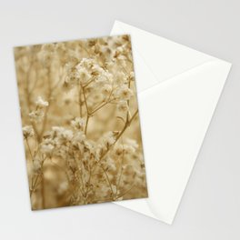 Morning Florals Stationery Cards