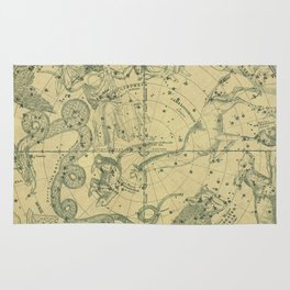 Atlas, Designed to Illustrate the Geography of the Heavens, plate 6 (1850) Rug