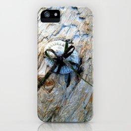 Seashell Present iPhone Case