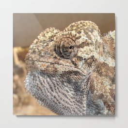Chameleon With Sinister Facial Expression Metal Print