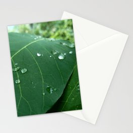 raindrop 5 photography Stationery Cards