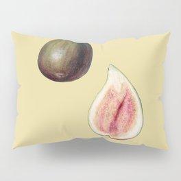 Ficus Carica - Fruit Illustration Pillow Sham