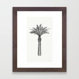 PALMAE Framed Art Print