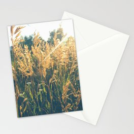 Golden Hour Hangout Stationery Cards