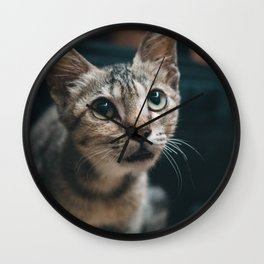 Cat by Vignesh Kumar R B Wall Clock