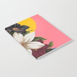 Reinvention I Notebook
