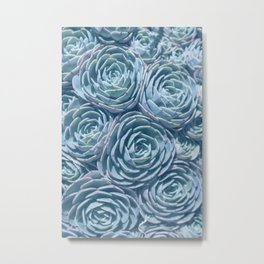 Blue and Green Succulent Metal Print
