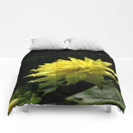 Yellow Passion Comforters