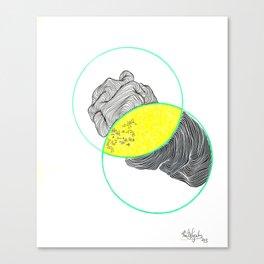 grebe Canvas Print