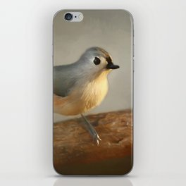 Winter Tufted Titmouse iPhone Skin