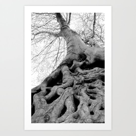 Taking Root Art Print