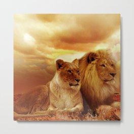 Lion couple | Couple de Lion Metal Print