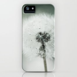 Soft End iPhone Case