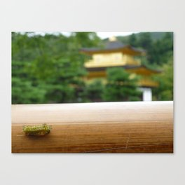 The Kinkaku-ji tiny caterpillar Canvas Print
