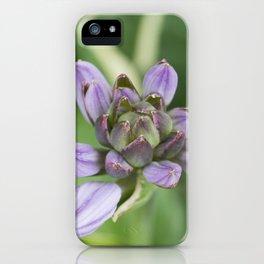 Lavender Velvet Slippers iPhone Case