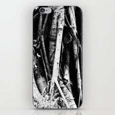Tree Roots iPhone & iPod Skin