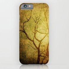Desire Slim Case iPhone 6s