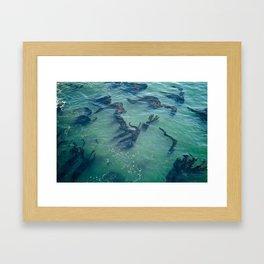 Life At Sea Framed Art Print