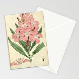 Flower nerium oleander Stationery Cards