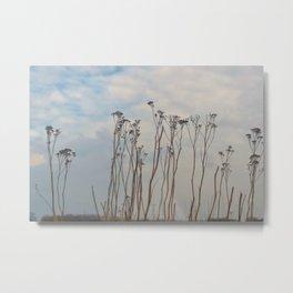 Dutch landscape flowers in winter - soft colored - ooijpolder fine art photography Metal Print