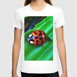 Ladybug on Leave T-shirt