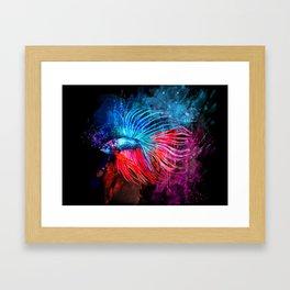 Fighter Fish 11 Framed Art Print