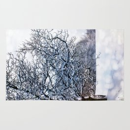 bokeh snow Rug