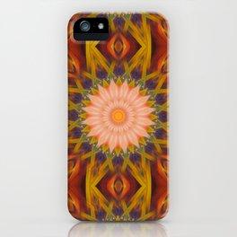 Coleção mandalas: Prosperidade iPhone Case