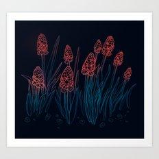 Hyacinths in the night Art Print