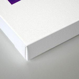 Denver skyline city purple Canvas Print