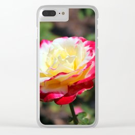 Rose With Colorful Tips Clear iPhone Case