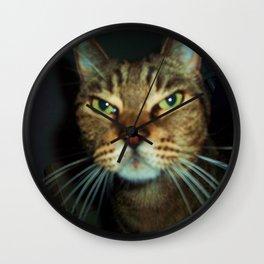 DO NOT DISTURB THE CAT! Wall Clock