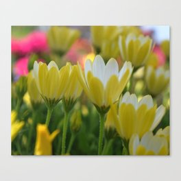 May Flowers For Mom Canvas Print