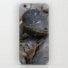 clam on a log iPhone & iPod Skin