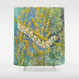 Cucullia Absinthii Caterpillar Shower Curtain