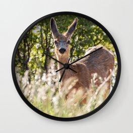 Mule Deer Wall Clock