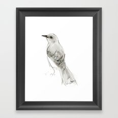 Hey Mockingbird Framed Art Print
