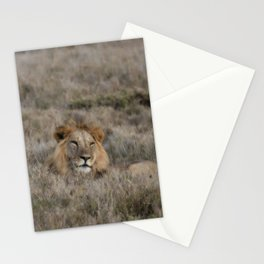 The Lion Is King Stationery Cards