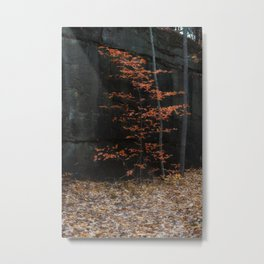 Between a rock and a hard place Metal Print