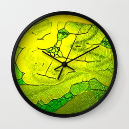Social Chameleon Wall Clock