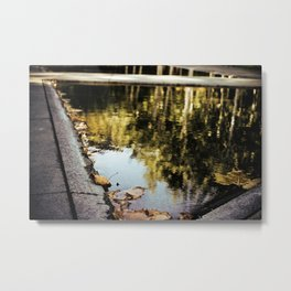 Reflections.  Metal Print