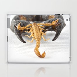 Against the Odds Laptop & iPad Skin