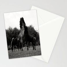 Wild Horses in Black and White Stationery Cards