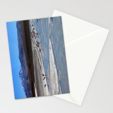 Volcanic Flamingos Stationery Cards