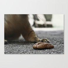 Squirrel's prey Canvas Print