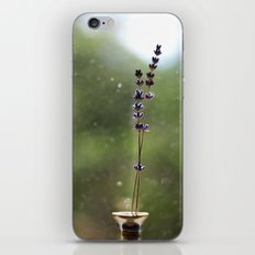 A Pair of Lavender Flowers iPhone & iPod Skin